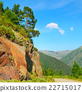 Scenic mountain landscape with cliff and pines 22715017