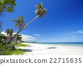 Beautiful Beach in Thailand 22715635