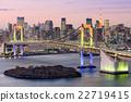 Tokyo Bay Skyline 22719415