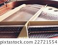 그랜드 피아노 22721554