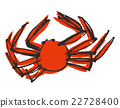 crab, crabs, crustacean 22728400