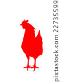 rooster, year of the cock, reflection 22735599