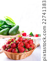Fresh strawberry harvest in the basket 22741383