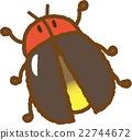 螢火蟲 昆蟲 蟲子 22744672
