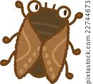 蝗虫 蝉 昆虫 22744673