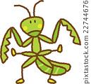 사마귀, 벌레, 곤충 22744676