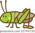 蚱蜢 蝗虫 虫子 22744730