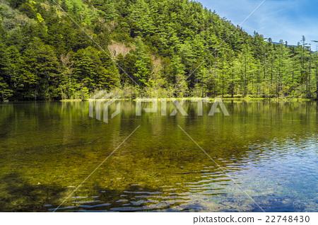 Shinshu Matsumoto-shi Koyedo area Akushike Pond Misaki Kazuyuki pond 22748430