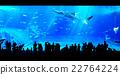 People watching giant whale shark in aquarium 22764224