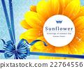 向日葵 矢量 花朵 22764556