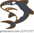 逆戟鯨 材料 素材 22771737