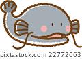 鯰魚 淡水魚 魚 22772063