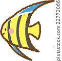 엔젤 피쉬 22772066