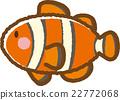 小丑魚 魚 材料 22772068