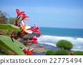 巴厘岛 海洋 海 22775494