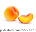 Peach And Slice. Vector illustration 22793173