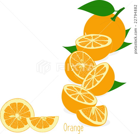 Orange slices, collection of vector illustrations 22794882
