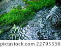 水 日本園林 日式花園 22795336
