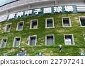 甲子園體育場的外牆 22797241