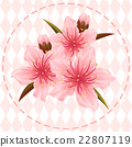 peach blossom flower illustration vector 22807119
