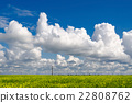 Blooming rapeseed field on background blue sky  22808762