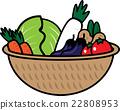 vegetables, vegetable, basket 22808953