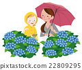 parenthood, parent and child, hydrangea 22809295