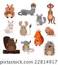 Cartoon rodents animals vector set. 22814917
