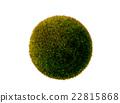 球 綠色 一個球體 22815868