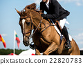 Equestrian Sports, Horse jumping, Show Jumping 22820783