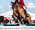 Equestrian Sports, Horse jumping, Show Jumping 22820785