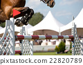 Equestrian Sports, Horse jumping, Show Jumping 22820789