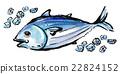 水彩画 洄游鱼类 鱼 22824152