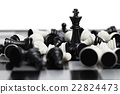 Chess board with figures 22824473