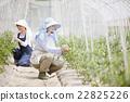 农业 农作 农事 22825226