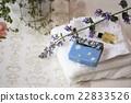 含有肥皂的 肥皂 材料 22833526