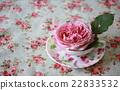 玫瑰 玫瑰花 银禧庆祝活动 22833532