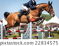 Equestrian Sports, Horse jumping, Show Jumping 22834575