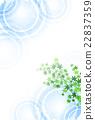 파문, 배경, 연못 22837359