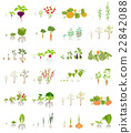 Fruits and vegetables. Nutrition. Icon set 22842088
