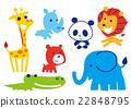 可愛い 動物 22848795