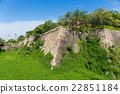 Osaka castle wall 22851184