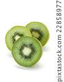猕猴桃 22858977