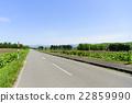 本莊(北海道) 22859990