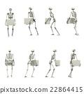 骨架 態度 骨頭 22864415