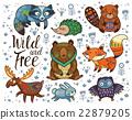 animal, owl, bear 22879205