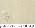 海星 沙子 多沙的 22880450