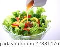蔬菜沙拉 蔬菜色拉 沙拉 22881476