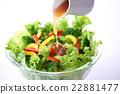 蔬菜沙拉 蔬菜色拉 沙拉 22881477