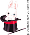 Rabbit in Top Hat Magic Trick 22889889